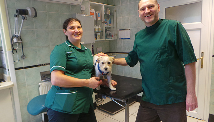 The Leek Veterinary Clinic Leek Vets Veterinary Vet